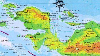 Ingat Makan Singkong dengan ikan bakar di Papua