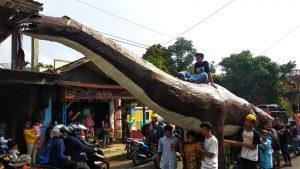 Replika Dinosaurus pun Dilibatkan pada Acara Samen Kadudampit, Cisaat Sukabumi