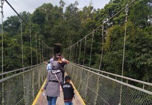 Wisatawan Menyeberangi Jembatan Terpanjang-Suspension Bridge Sukabumi