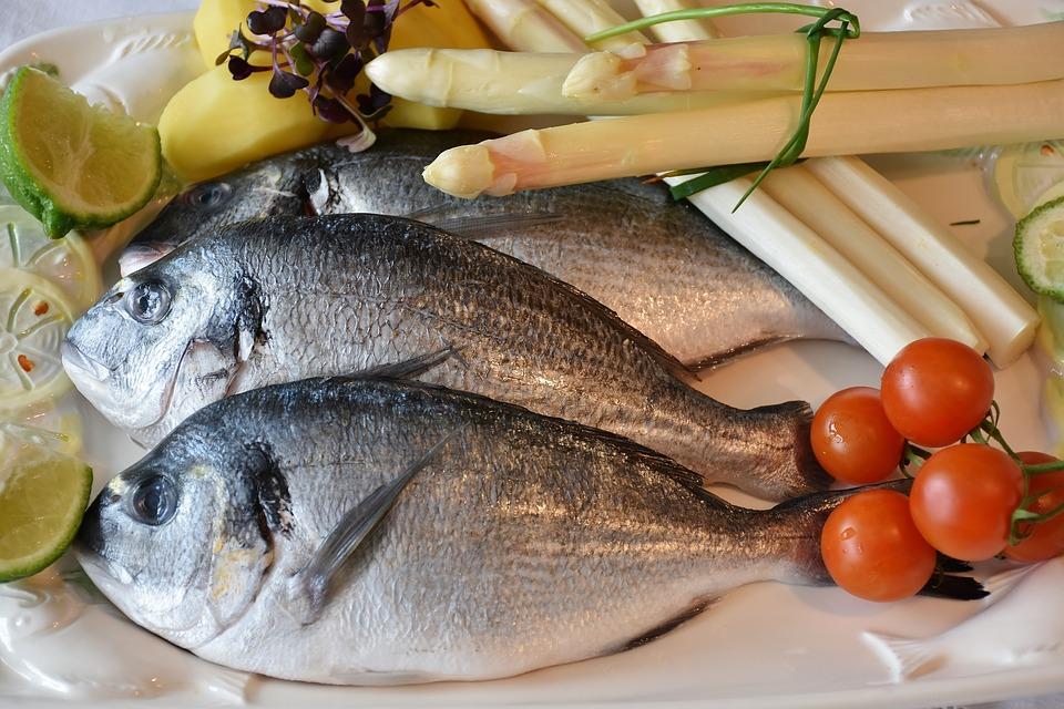 Ciri Ikan Segar Tidak berformalin yang Baik Bagi Kesehatan