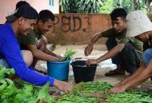 Petani muda Cibiru Cicantayan Sukabumi