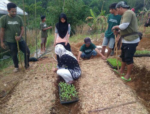 Pemuda Milenial Bertani baik laki-laki dan perempuan ikut serta