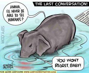 Kasus hilangnya nyawa gajah tersebut membuat banyak pihak marah