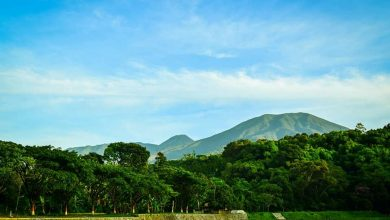 Taman Nasional Gunung Gede Pangrango akan Dibuka Kembali. Foto Abdun Nasir