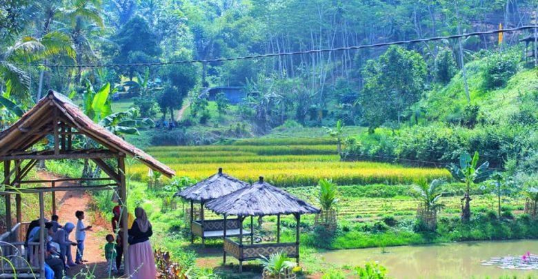 Nuansa Perkampungan dan Sawah nan Indah di Kampung Lisung Uyut Sukabumi