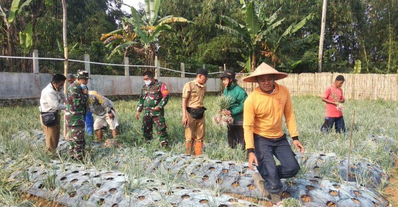 Regenerasi Petani Muda Sukabumi Sangat Dibutuhkan