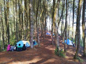 Camping di antara Pohon-Pohon di Bukit Sabak Sukabumi. Foto: Kusnadi Putrafajar
