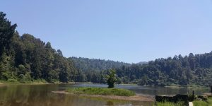 Panorama Danau Situgunung Taman Nasional Gunung Gede Pangrango.