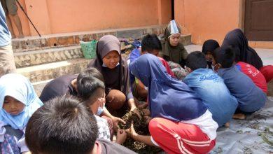 Petani Muda Cibiru Sukabumi Mengadakan Workshop Pertanian Organik