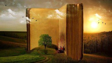 Baca buku mempengaruhi kemampuan otak