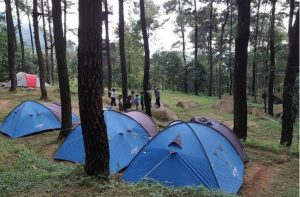 Kawasan Camping ground Gunung Pancar. Foto https://www.instagram.com/gunungpancar/