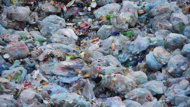 Edukasi larangan kantong plastik