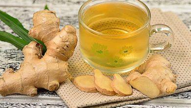Ramuan herbal obat tradisional